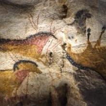 Les hommes préhistoriques ont peint et gravé de nombreux chevaux dans la grotte. Ces oeuvres ont été reproduites intégralement et à l'identique dans le nouveau Lascaux