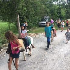Tous les mardis matin une animation ballade en poney est organisée par annick au camping 3 étoiles le Douzou en Dordogne Périgord Noir