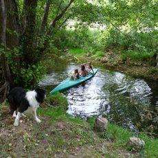 Le Céou traverse le camping, il constitue la frontière entre notre espace vie et notre espace animation