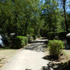 Nos emplacements camping sont situés en forêt, profitez d'un grand espace mi-ombragé délimité par la végétation et sans vis à vis