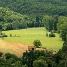Le camping 3 étoiles le Douzou en Dordogne Périgord Noir n'est pas situé en bord de route. Seule la nature entoure le camping
