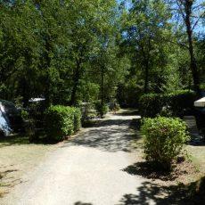 Le Camping 3 étoiles le Douzou en Dordogne Périgord Noir propose de grands emplacements pour votre tente ou caravane en pleine nature. En terrasse et délimités par une végétation luxuriante, vous y trouverez du soleil et de l'ombre