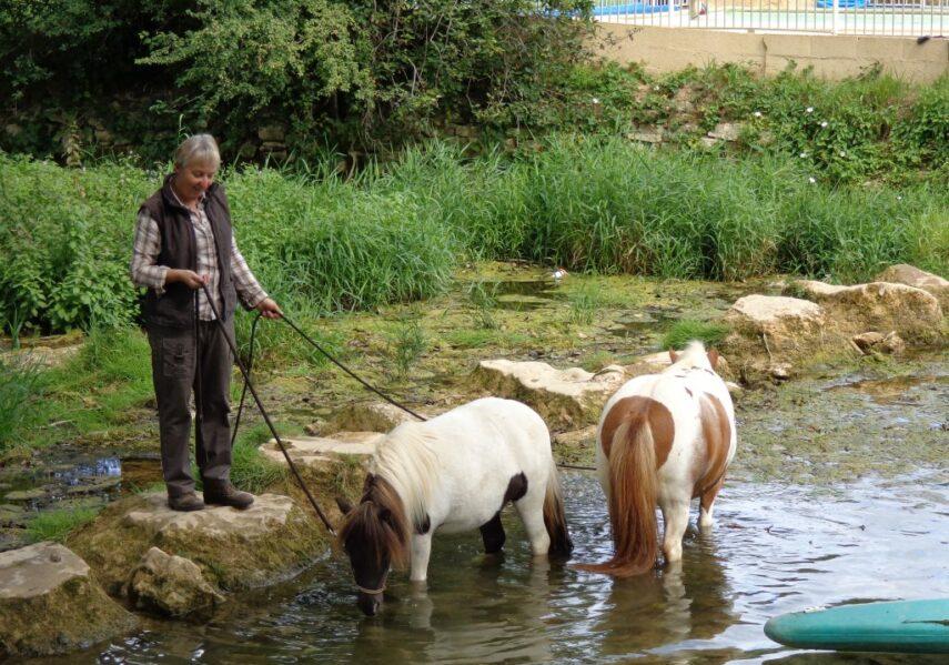 Tous les mardis matin en juillet et août, Patricia vous proposera des ballades en poney sur les beaux chemins qui bordent le Douzou en Dordogne Périgord Noir