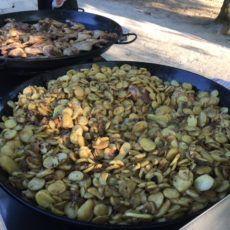 pomme de terre sarladaise camping perigord