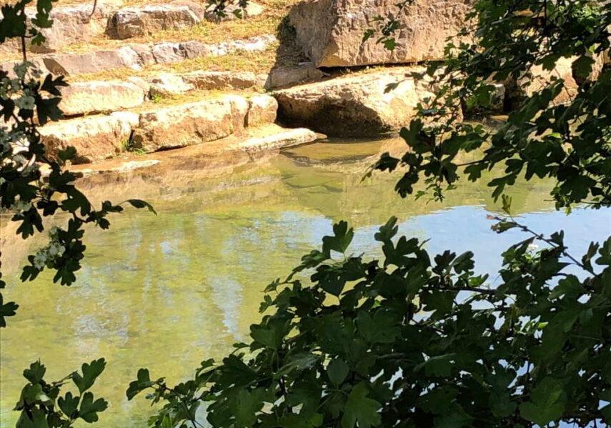 camping dordogne rivière nature