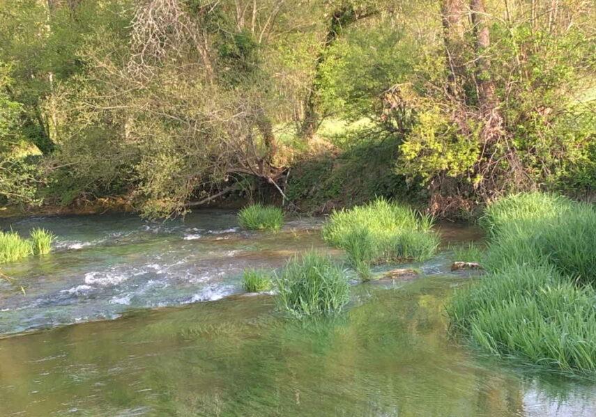 rivière le céou camping dordogne