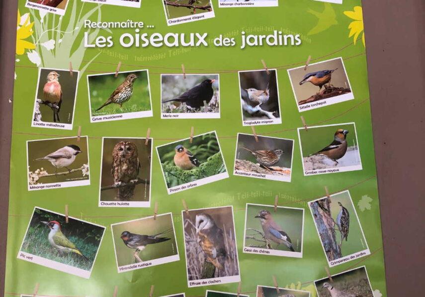 refuge oiseaux camping dordogne